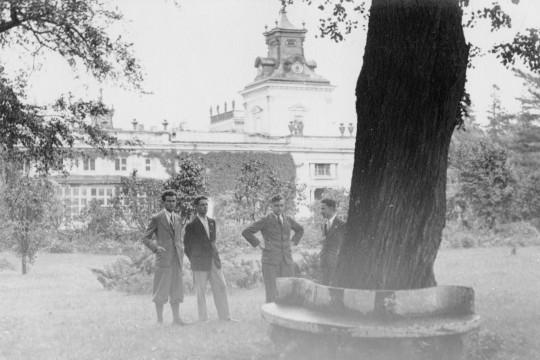 Ogromne drzewo z ławką dookoła pnia. Obok niego pozuje czterech młodych mężczyzn w garniturach. W oddali fasada pałacu porośnięta bluszczem.