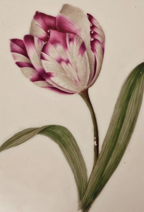 Tulipan, serwis deserowy. Porcelana malowana naszkliwnie..jpg