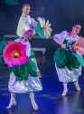Cracovia Danza_fot. Ilja Van de Pavert, taniec, balet.jpg