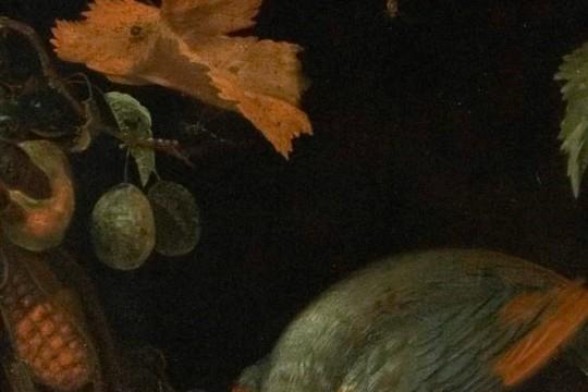 Martwa natura z papugą (fragment), Abraham Mignon, 2 poł. XVII w., Muzeum Pałacu Króla Jana III w Wilanowie, królewskie menu.jpg