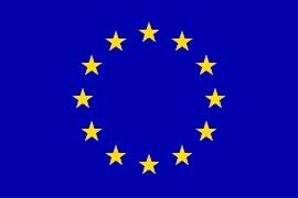 1_euflag.gif